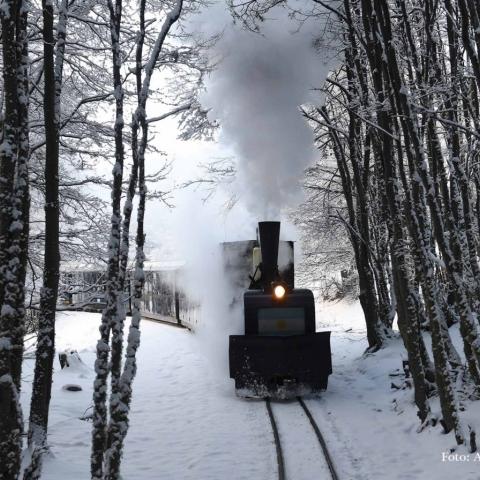 Fotos del Tren del Fin del Mundo
