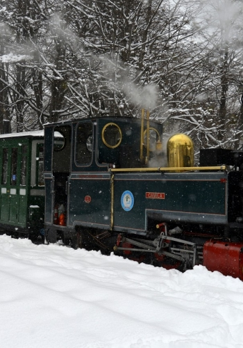 Locomotiva Camila