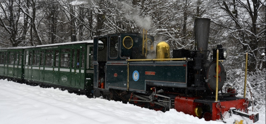 Camila Locomotive